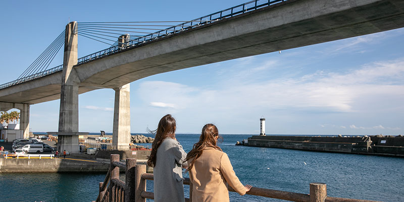 Odawara Fishing Harbor